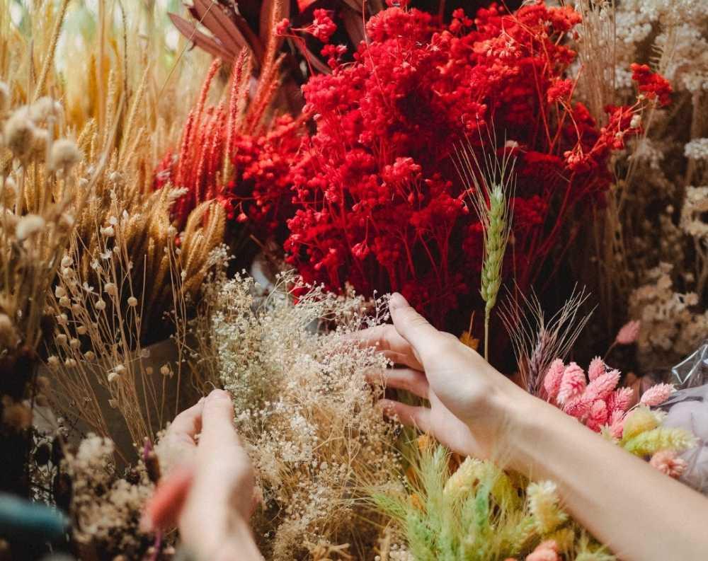 Sucesso em sua Floricultura